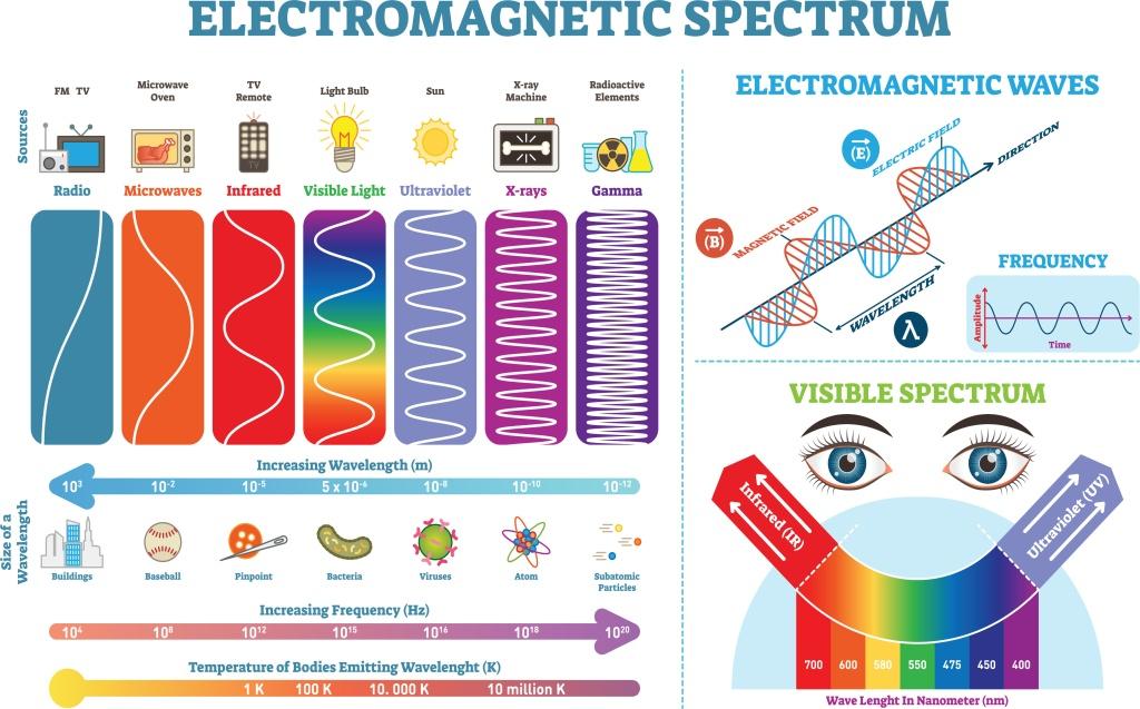 Spektrum der Elektromagnetischen Strahlung und die Ausrichtung. Größenvergleich der Wellenlänge anhand physischer Vergleiche